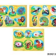 Игрушка деревянная вкладыш лесные зверята и птички 14-0444 фото
