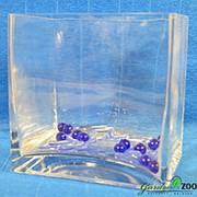 Цветочный ящик Цикламен 2051 фото