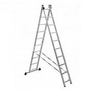 Лестница двухсекционная Алюмет H2 5210 фото