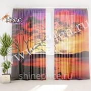 Закат в Японии холст арт.ТФТ4895-h275 (145х275-2шт) фототюль (штора Шифон ТФТ) фото