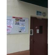 Предлагаем расклеить объявления на информационные доски возле подъездов. фото