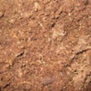 Торф для приготовления компостов фото