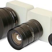 Сетевые камеры Vocord NetCam серии L фото