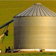 Хранение сельскохозяйственной продукции фото