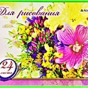"""Альбом 113330 Алингар AL 6730 """"Букет полевой"""" для рисования ( 24 л./ А4 ) на скрепке ( цена за 1 шт.) фото"""