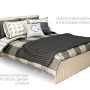 Кровать Мокко дуб молочный Мебель Парк фото