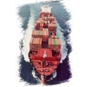 Комплексных услуг по экспедированию и перевалке различных грузов в Николаевском морском торговом порту фото