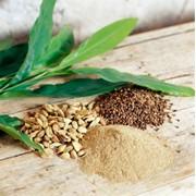 Натуральные экстракты, олеорезины и эфирные масла специй и пряностей. фото