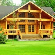 Дома строительство из оцилиндрованного бревна фото