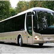Автобусы междугородные фото
