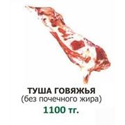 Мясо говядина. Туша. фото