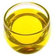 Жожоба масло фото