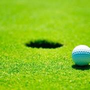 Строительство гольф полей, подготовка полей для гольфа фото