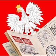 Польское рабочее приглашение на 180 дней пребывания в Польше фото