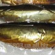 Рыба холодного копчения Сельдь х/к фото