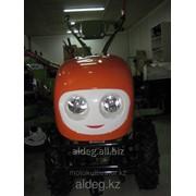Мотоблок профессиональный КАМА 186 c диф фото