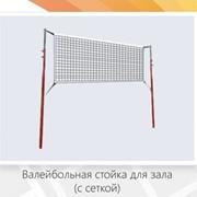 Волейбольная стойка для зала (с сеткой) фото