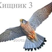 Отпугиватель птиц визуальный Хищник 3 средний фото