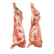 Мясо говяжье полутуши глубокой заморозки в Алматы фото