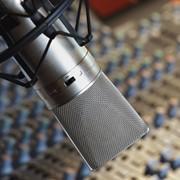 Сольные альбомы, демо-записи, рекламные и имиджевые аудиоролики, музыкальное оформление радиопрограмм, саундтреки, дублирование фильмов, запись IVR, озвучивание компьютерных игр, аудиокниги, музыкальные логотипы фото