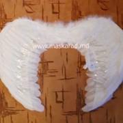 Купить крылья ангела, крылья ангела фото