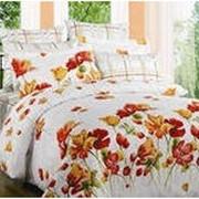 Комплект постельного белья (евро) фото