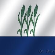Флаг города Камышин (Волгоградская область) фото
