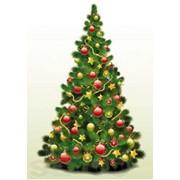Доставка новогодней елки на дом (с установкой) фото