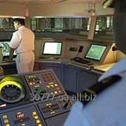 Навигационный тренажер Navi-Trainer Professional 5000 NTPRO 5000 фото