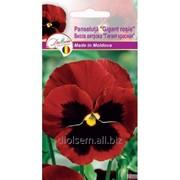 Семена Евро Витрока гигант Красная фото