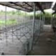 Проектно-строительные работы в сельском хозяйстве. фото