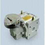 Устройства учета расхода газа, счетчики газа ротационные RVG G16 фото