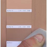 Подбор фирменной цветовой гаммы фото