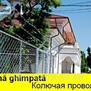 SIRMA GHIMPATA IN MOLDOVA,КОЛЮЧАЯ ПРОВОЛОКА,GARDURI,PLASA фото