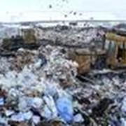Реестровые карты отходов фото