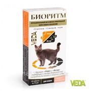 Витамины Биоритм для кошек с рыбой 48 таб Veda фото