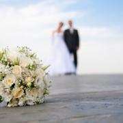 Организация мероприятий ,помощь в проведении свадеб, аренда оборудования, ремонт и настройка аппаратуры фото