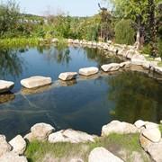 Построим, сделаем плавательный, искусственный пруд (пруд для купания, экопруд, водоем) фото