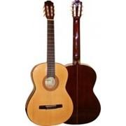 Гитара классическая Varna фото