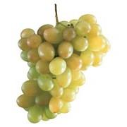 Виноград оптовыми партиями фото