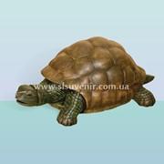 Садовая скульптура Черепаха (Б) фото