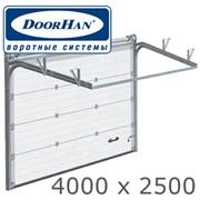 Ворота гаражные секционные ДОРХАН /DoorHan RSD02 4000x2500/ фото