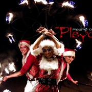 "Новогоднее шоу театра огня ""Pleyada"" фото"