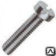 Винт 3х20 мм оцинкованный ГОСТ 1491-80, DIN 84 фото