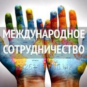 Поиск иностранных и российских деловых партнеров фото