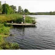 Все для рыбалки. фото