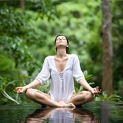 Йога для начинающих. Базовый курс фото