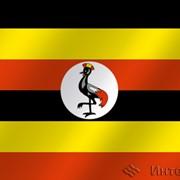 Флаг национальный Уганда фото