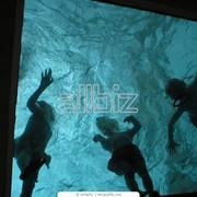 Плавание для детей в детском саду фото