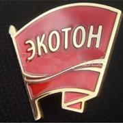 Изготовление значков «Экотон» фото